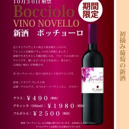 2016年 イタリアワイン新酒ノヴェッロ
